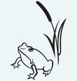 Frog near reed vector image vector image