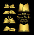 golden open books icons vector image
