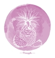 Pineapple on watercolor pink cirlce vector image