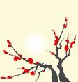 Sakura blossom branch vector image vector image