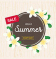 summer greeting season with plumeria flowers vector image vector image