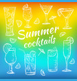 tropical exotic cocktails vector image vector image