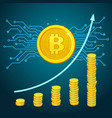 concept crypto-currency vector image vector image