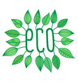 green eco sign in with growing leaves vector image vector image