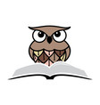 owl and book vector image vector image