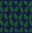 tropical leaves foliage frond plant botanical blue vector image vector image