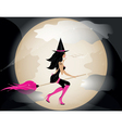 witch on broom vector image