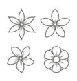 Jasmine Flower Icons Set on White Background vector image