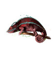 chameleon from a splash watercolor colored vector image vector image