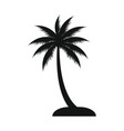 coconut tree icon design template isolated vector image vector image