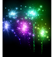 Festive color firework background vector image
