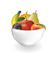 fruits in a bowl vector image