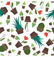 seamless potted plants and flowers pattern vector image