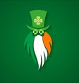 StPatrick Day Leprechaun sign Irish flag vector image