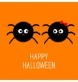 Spider insect family couple Boy Girl Halloween vector image