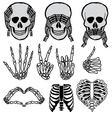 Halloween skull set vector image