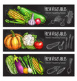 vegetable and bean chalkboard banner food design vector image vector image