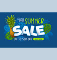advertising banner about seasonal summer sale vector image vector image