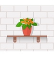 Houseplant Design Flat Concept vector image vector image