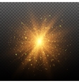 Light effect Star burst with sparkles vector image vector image