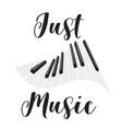 musical instrument keys vector image vector image