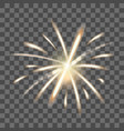 realistic detailed 3d fire spark on a transparent vector image vector image