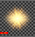 realistic light vector image