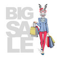 retro hipster animal rabbit big sale poster vector image vector image