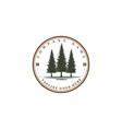 rustic pine evergreen cedar cypress larch conifer vector image vector image