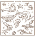 sea and ocean animals or fish sketch vector image