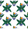 Strelitzia and butterfly seamless pattern