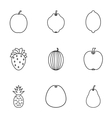 Types of fruit icons set outline style vector image vector image