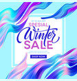 winter sale lettering banner with color fantastic vector image