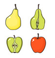 apples and pears on white background vector image