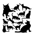 adorable burmese cat animal silhouettes vector image vector image