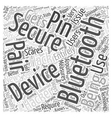Bluetooth Security Word Cloud Concept vector image vector image