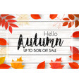 enjoy autumn sale background with autumn leaves vector image vector image
