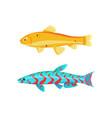 malawi yellow zebra fish set vector image vector image