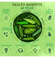 Peas Health Benefits 03 A vector image vector image