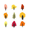 stylized simple colored autumn forest icon pack vector image