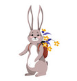 bunny carrying flowers in rucksack happy hare vector image