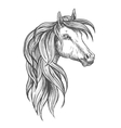 Cavalry morgan horse sketch symbol vector image vector image