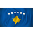 Flag of Kosovo vector image vector image