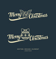 merry christmas modern hand drawn lettering vector image vector image