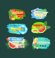 summer discount sales banner vector image vector image