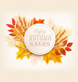 autumn sales banner with colorful leaves and vector image