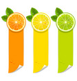 banners with orange lemon and lime vector image vector image