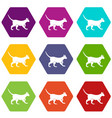 cat icon set color hexahedron vector image