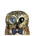 cute smart owl with bow tie and monocle vector image vector image