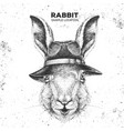hipster animal rabbit with hat vector image